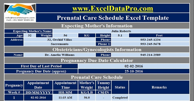 Download Prenatal Care Schedule Excel Template