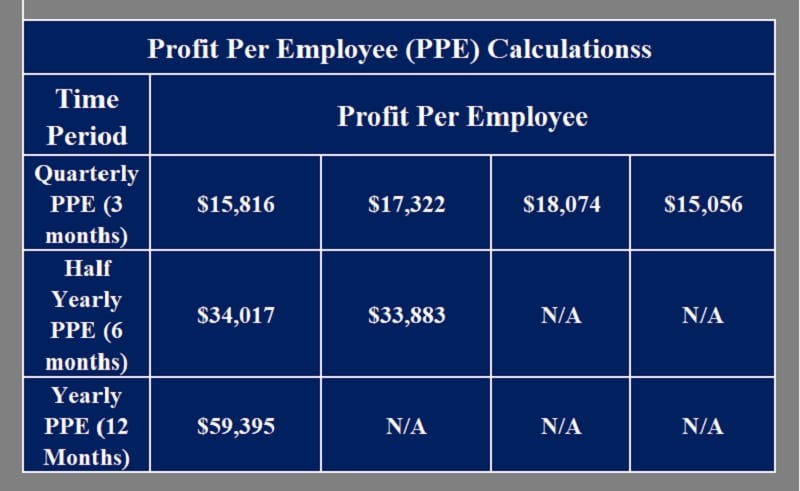 Profit Per Employee Calculator